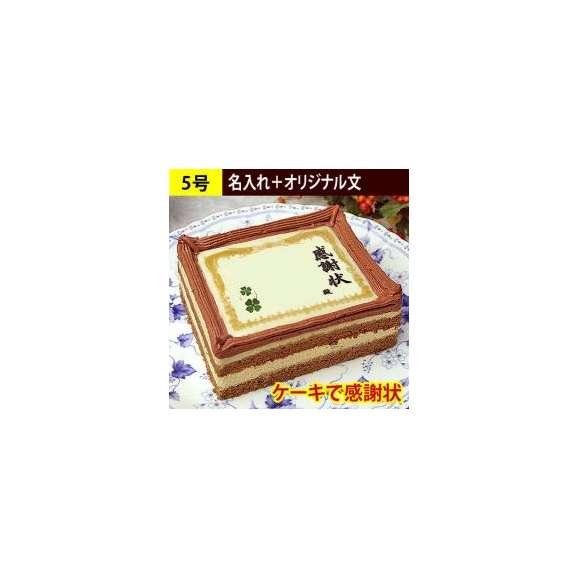 ケーキで感謝状 名入れ+オリジナル文 60文字以内 5号サイズ01