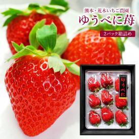 ゆうべに 苺 いちご 熊本県産 秀品 2パック詰め(1パック400g~450g) 化粧箱入り | 生産者限定 荒木いちご農園