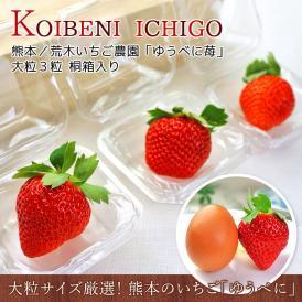【20箱限定】KOIBENI ICHIGO ゆうべに 苺 いちご 熊本県産 大粒 3粒 桐箱入り | 生産者限定 荒木いちご農園