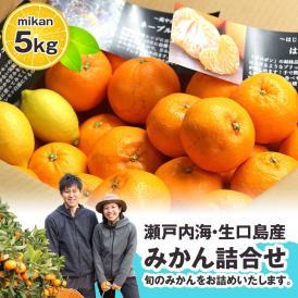 大地さんの蜜柑 みかん 詰め合わせ 5kg 広島県産 送料無料 | せとか はるか ネーブル オレンジ 清見 八朔 サンフルーツ レモン など