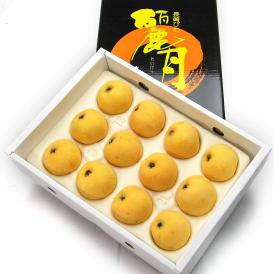 びわ 麗月 れいげつ 長崎県産 約700g 12玉~15玉 化粧箱入り 送料無料