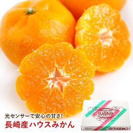 〇南 ハウス みかん 長崎県産 温室みかん まるなん 約2.4kg 20玉~24玉 化粧箱入り 送料無料
