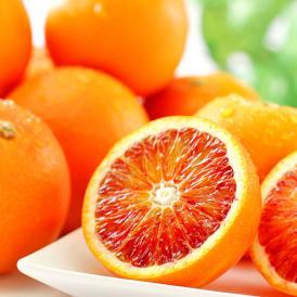 真穴のタロッコ 愛媛県産 約2kg 10~15玉 詰め合わせ 国産 ブラッド オレンジ みかん 送料無料