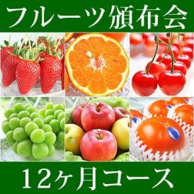 12ヵ月(1年)コース フルーツ頒布会 (果物はんぷかい) | 毎月旬の果物をお届けの通販なら日本ロイヤルガストロ倶楽部