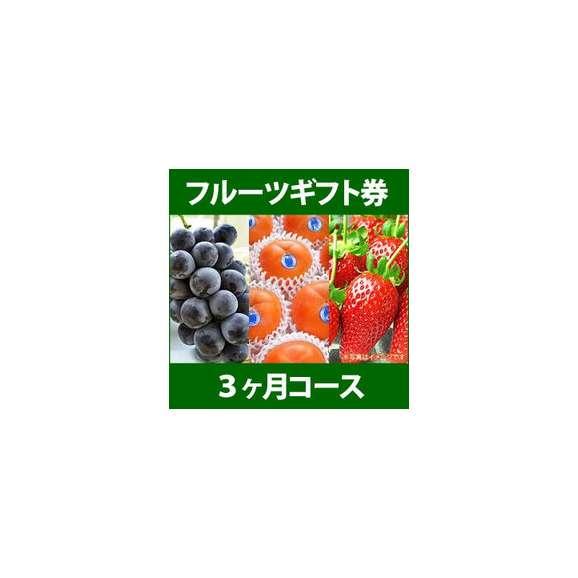 フルーツギフト券 3ヶ月コース ギフト券・カタログ01