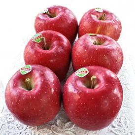 訳ありでお得。ひと足早く10月に岩手のおいしいふじりんごをお届けします。