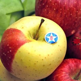 赤いラインが美しい!りんご金星(きんせい)を岩手県からお取り寄せ♪