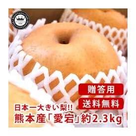 愛宕梨(あたごなし) 熊本県産 約2.3kg(3~5玉入り) 化粧箱入り 送料無料 芳野の日本梨 日本一大きい梨