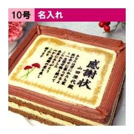 母の日 ケーキで感謝状(カーネーション) 名入れ 10号サイズ 送料無料 メッセージお菓子