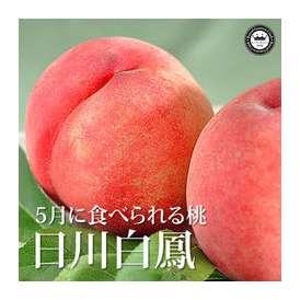 たった1%の貴重な桃 「日川白鳳」(約1kg)【送料無料】【山梨県産ハウス栽培】【フルーツお取り寄せ】