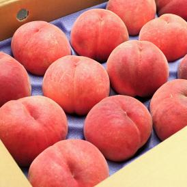 500年農家の極上フルーツを産地直送!