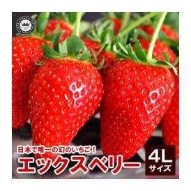 X(エックス)ベリーいちご(苺) 福島県産 4Lサイズ 15粒詰め 送料込み