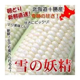 【送料無料】【北海道十勝産】フルーティーな味!純白のとうもろこし雪の妖精約4kg2L10本前後