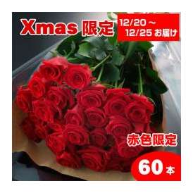 【送料無料】クリスマス赤いバラの花束ギフト60本