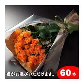 【生産者直送】だから花持ちが違う!【送料無料】バラの花束ギフト60本