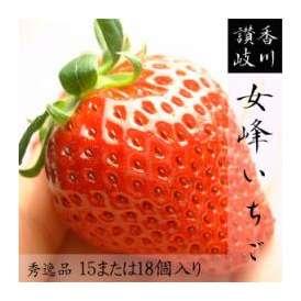 【送料無料】仲買人が最高と賞賛する極上品!香川県産 女峰いちご 秀15または18個