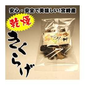 【希少な国産!農薬不使用】宮崎県産の乾燥きくらげ10g入り×5袋セット