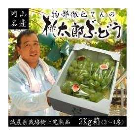 【最終収穫セール!】【送料無料】物部さんの桃太郎ぶどう2〜4房2kg箱