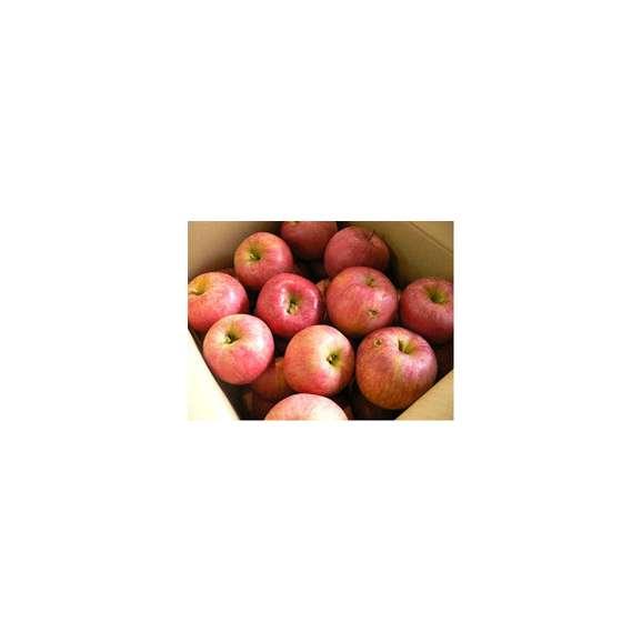 【送料無料】わけあり山形産リンゴたっぷり10キロ03