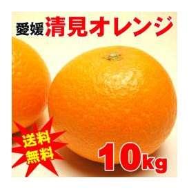 【送料無料】愛媛産清美オレンジA級品10キロ満杯詰め