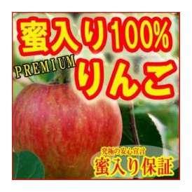 【送料無料】蜜入りプレミアム・サンふじりんご3kg(8~11玉) 贈答用・化粧箱入りで、なんと蜜入り保証!最高のリンゴをお届け致します!※12月初旬からお届け!