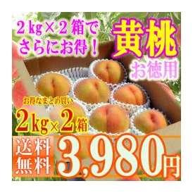 【2箱購入で更にお得】山形黄桃約2kg(8~12玉前後)×2箱!無袋栽培のゴールデンピーチ・味を重視した数量限定の掘り出し桃【送料無料】