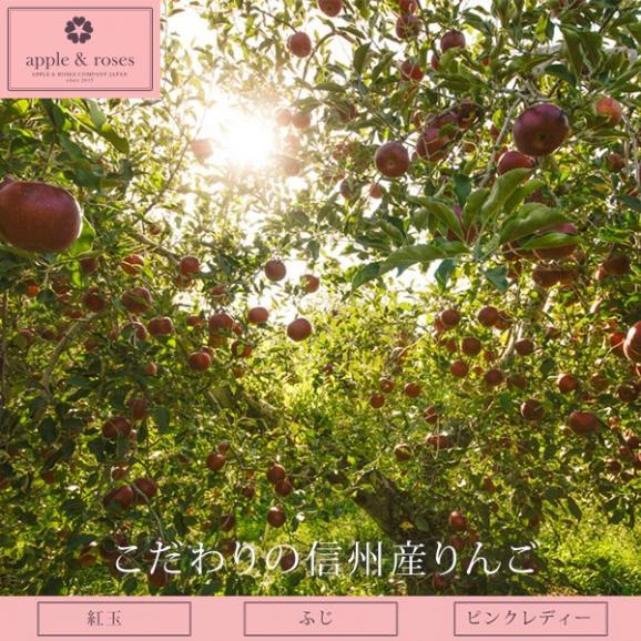 アップル&ローゼスタルト ブーケ Lサイズ04