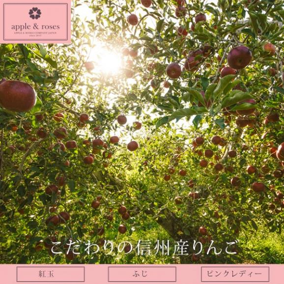 アップル&ローゼスタルト ブーケ Lサイズ 04