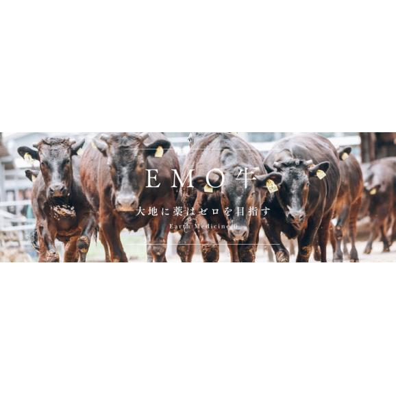 宮崎県産 黒毛和牛 EMO牛(有田牛)リブロースステーキ 【200g×4枚】06