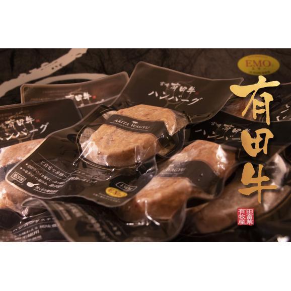 宮崎 有田牛(EMO牛)手ごね生ハンバーグ 150g×10個セット01