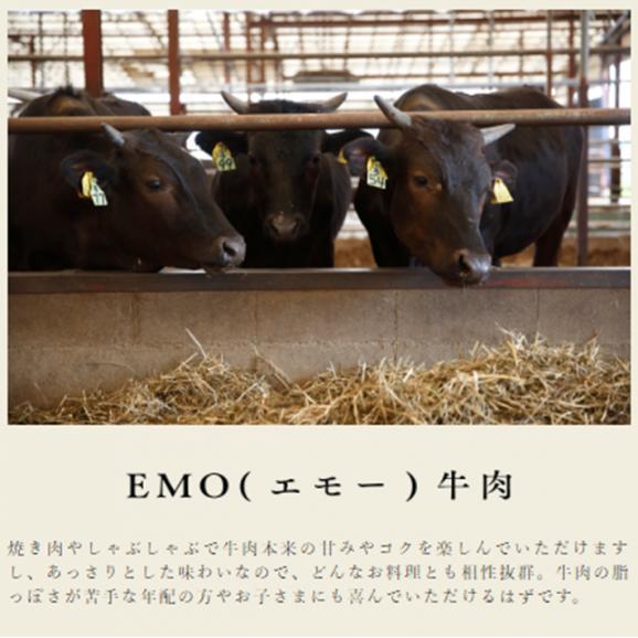 宮崎県産 黒毛和牛 EMO牛(有田牛)肩・バラ・モモ 切落し500g02