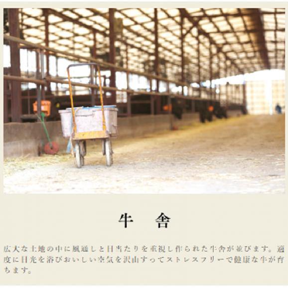 宮崎県産 黒毛和牛 EMO牛(有田牛)肩・バラ・モモ 切落し500g03