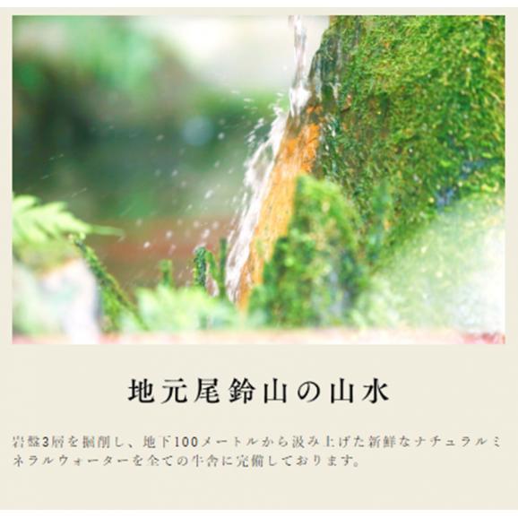 宮崎県産 黒毛和牛 EMO牛(有田牛)肩・バラ・モモ 切落し500g05