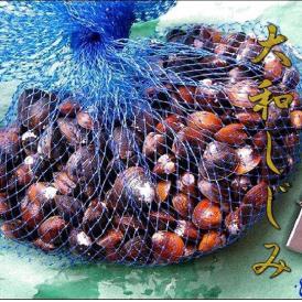 大和しじみ大1kg(冷凍) シジミ 蜆 貝 かい カイ しんじこ