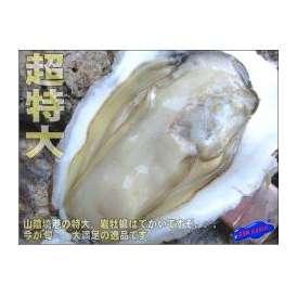 生食用、岩牡蠣12個程度で5kg