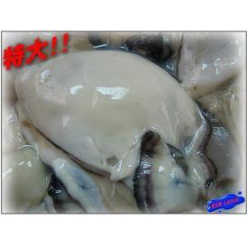 牡蠣剥き身L-1kg かき カキ 貝 カイ かい