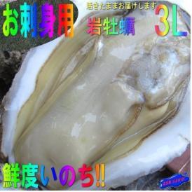 生食用、岩牡蠣25個で10kg前後(着日指定不可) かき カキ 貝 かい カイ