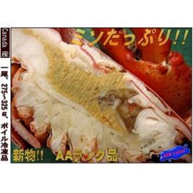 世界の逸品をご家庭で!! ボイル オマール海老1匹 えび エビ おまーる ろぶすたー ロブスター