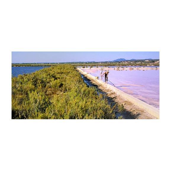 マヨルカ島の塩 ハイビスカスソルト02