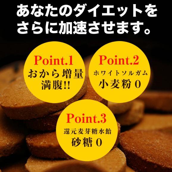 トリプルゼロクッキー(1Kg)03
