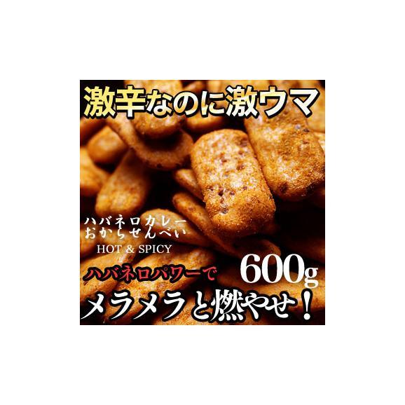 ハバネロカレーおからせんべい(150g×4袋)01