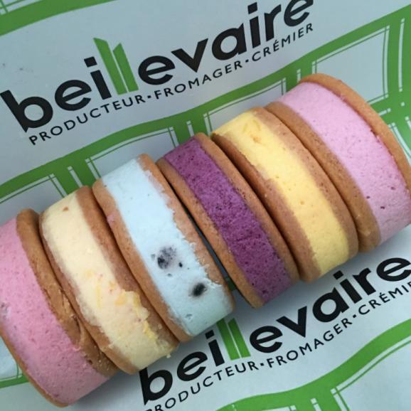 夏限定!パリで人気の高級バター&チーズメゾン beillevaire(ベイユヴェール) 新感覚アイスフロマージュサンド 【サンド グラッセ フロマージュ】6個詰め合わせ 03