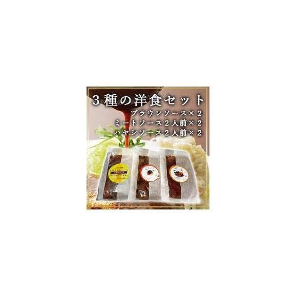 3種の洋食セット ブラウンソース×2、ミートソース2人前×2、ハヤシソース2人前×201