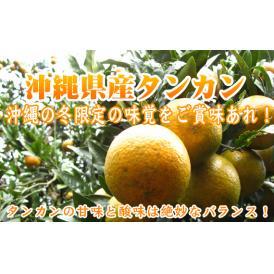 幻の沖縄産タンカン4kg