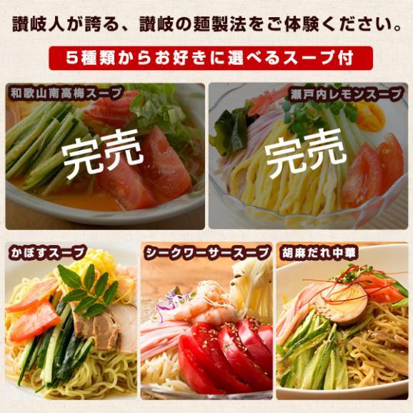 冷やし中華 麺が本気で旨い生冷し中華 9人前 選べるタレ付き グルメ お取り寄せ 送料無料02