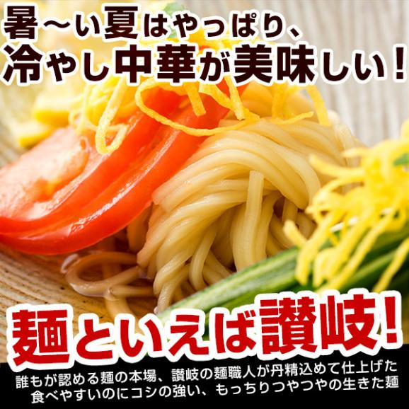 冷やし中華 麺が本気で旨い生冷し中華 9人前 選べるタレ付き グルメ お取り寄せ 送料無料03