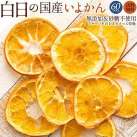 ドライフルーツ 白日の国産いよかん 60g 無添加 砂糖不使用 愛媛県産 送料無料