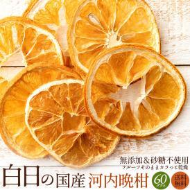 ドライフルーツ 白日の国産河内晩柑 60g 無添加 砂糖不使用 愛媛県産 送料無料