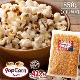 ポップコーン豆 送料無料 バタフライタイプ 850g 約42人分 ポップコーン 豆