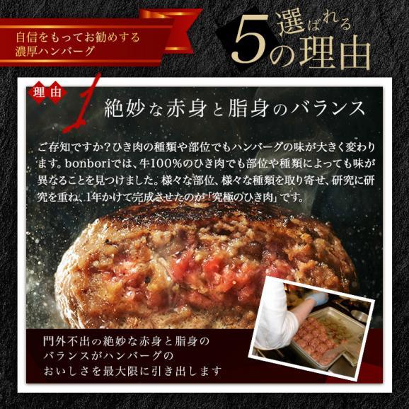 【送料無料(本州)】究極のひき肉で作る 濃厚 牛100% ハンバーグステーキ 200g×8個入り (プレーン200g)02